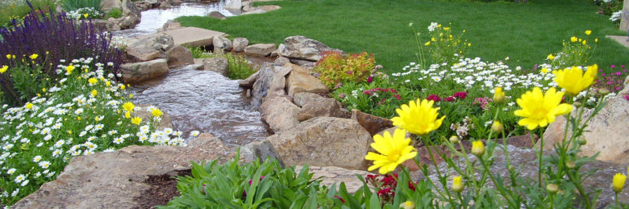 3 Things You Can Do To Save Water With Your Landscape