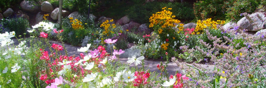 Plan Ahead With These Tips For Summer Landscaping