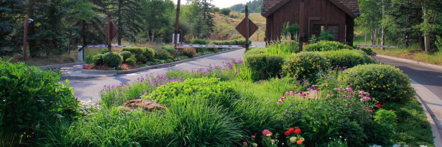 Improving Your Commercial Landscape Design