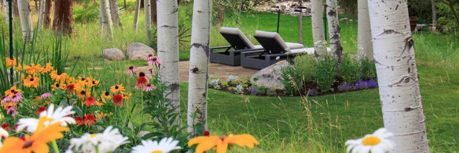 3 Surprising Health Benefits of Having a Good Landscape